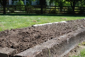 raised bed blog